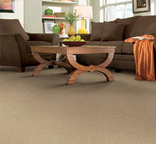 Carpet Brands - Lake Havasu City, Az